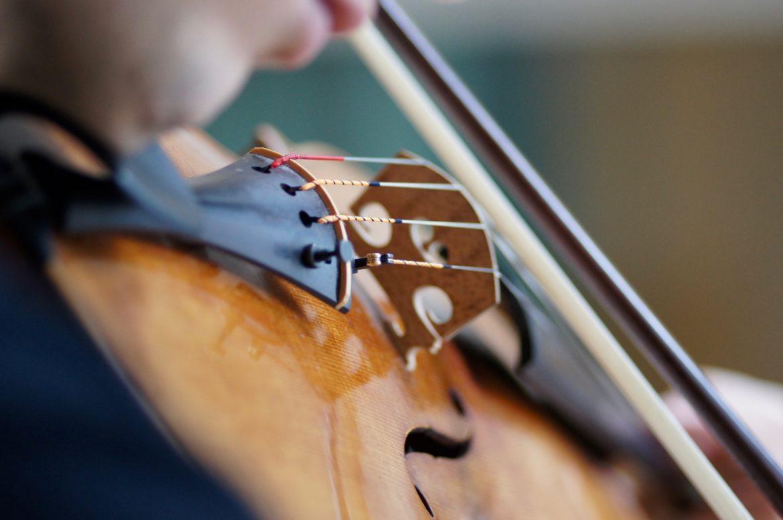 Altiste virtuose, une vie d'exigence et d'excellence